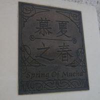 慕夏之春18